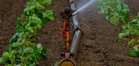 irrigationHQ